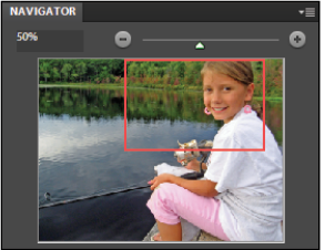 how to get the navigator panel on photoshop