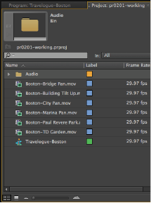 Premiere Pro Tutorial: Using the Project panel